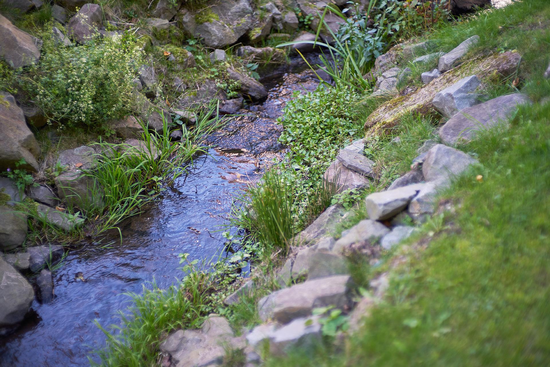 Das sanfte Plätschern des Wesebachs ist im Garten des Löhlbacher Hofs zu hören.