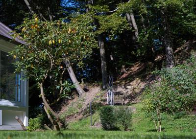 Sie und Ihre Lieben mögen Spaziergänge? Unternehmen Sie eine kleine Tour im angrenzenden Waldstück